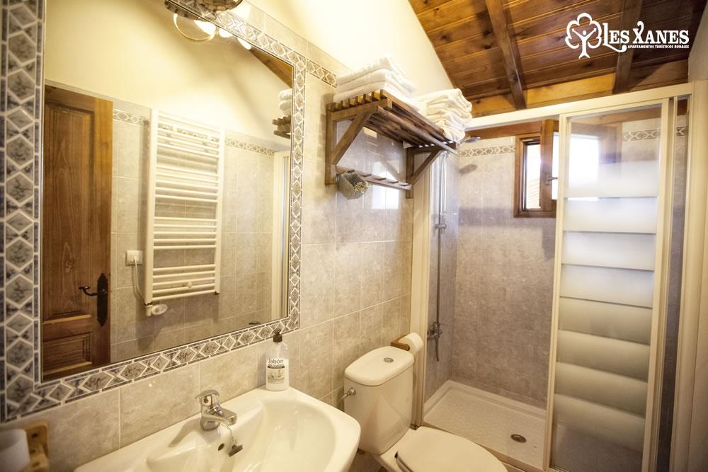Aseo baño ducha